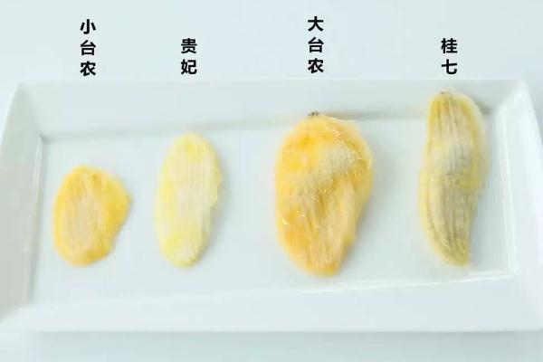 芒果核可以泡水喝吗 芒果核煮水功效与作用